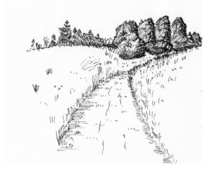 Forsidebillede til CD af landskabsarkitekt Poul Erik Pedersen